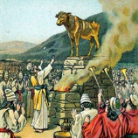 185: Golden Calf